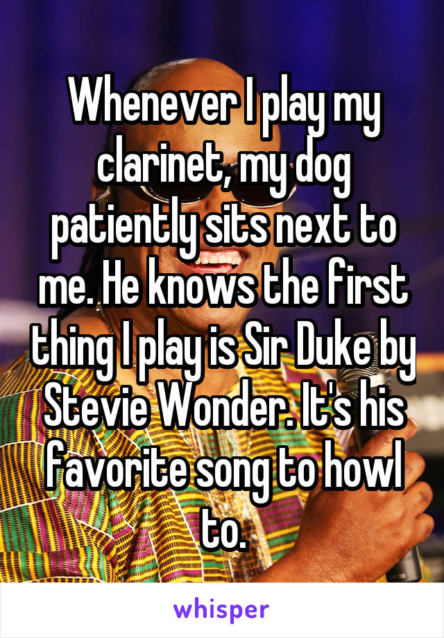 Whenever I play my clarinet, my dog patiently sits next to me. He knows the first thing I play is Sir Duke by Stevie Wonder. It's his favorite song to howl to.