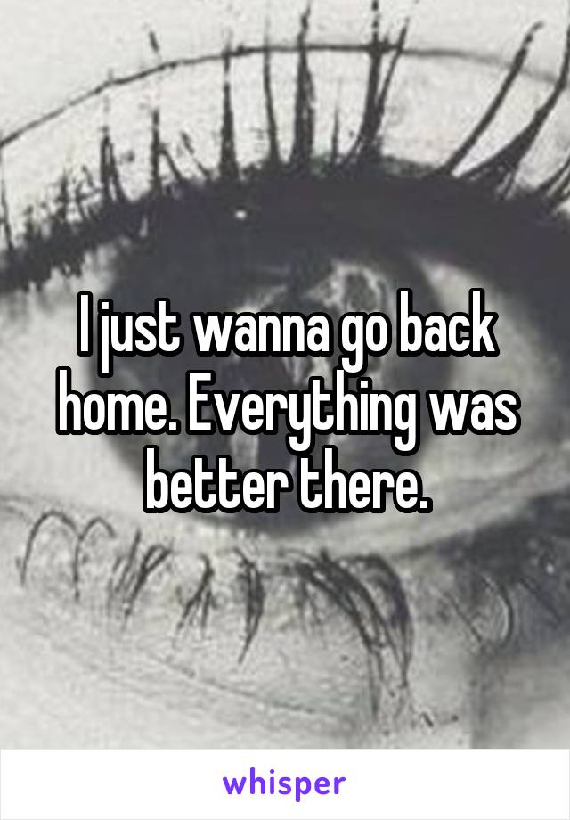 I just wanna go back home. Everything was better there.