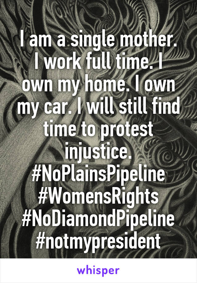 I am a single mother. I work full time. I own my home. I own my car. I will still find time to protest injustice. #NoPlainsPipeline #WomensRights #NoDiamondPipeline #notmypresident