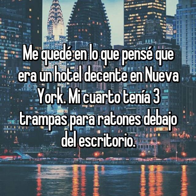 Me quedé en lo que pensé que era un hotel decente en Nueva York. Mi cuarto tenía 3 trampas para ratones debajo del escritorio.