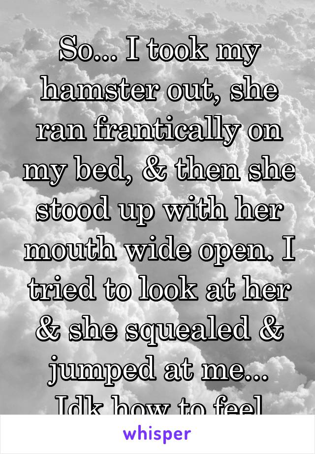 So... I took my hamster out, she ran frantically on my bed, & then she stood up with her mouth wide open. I tried to look at her & she squealed & jumped at me... Idk how to feel