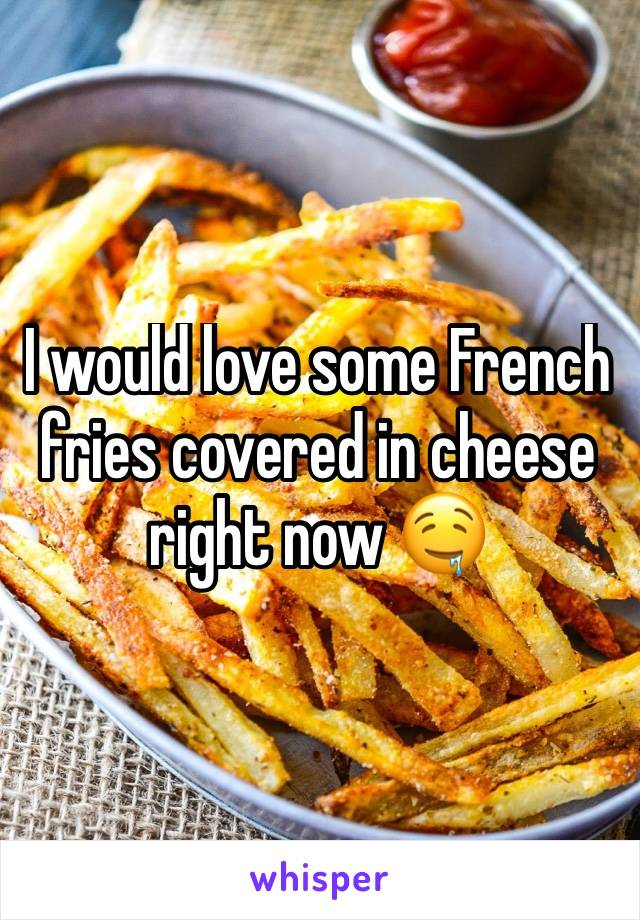 I would love some French fries covered in cheese right now 🤤