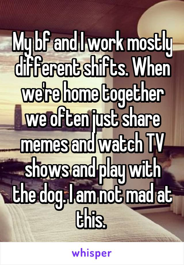 My bf and I work mostly different shifts. When we're home together we often just share memes and watch TV shows and play with the dog. I am not mad at this.