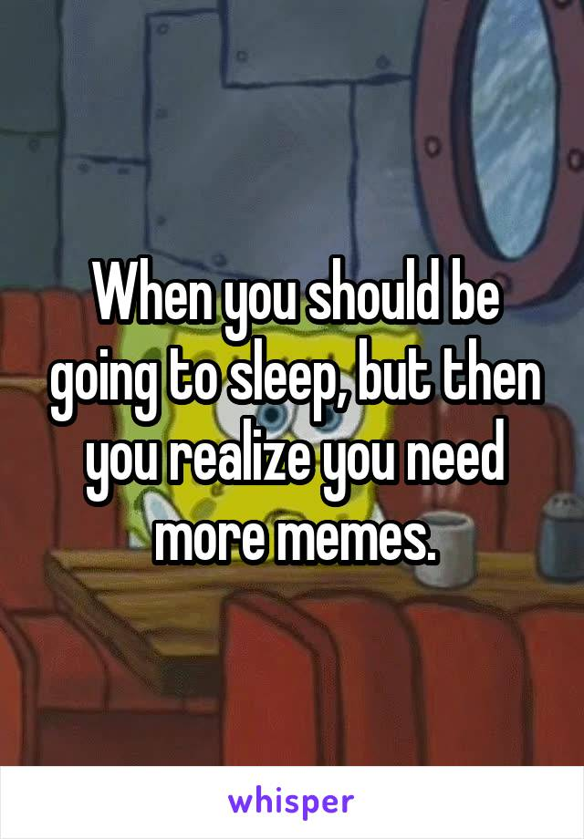 When you should be going to sleep, but then you realize you need more memes.