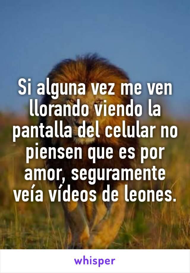 Si alguna vez me ven llorando viendo la pantalla del celular no piensen que es por amor, seguramente veía vídeos de leones.