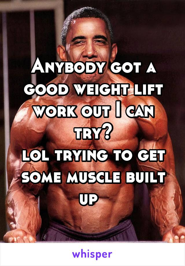 Anybody got a good weight lift work out I can try? lol trying to get some muscle built up
