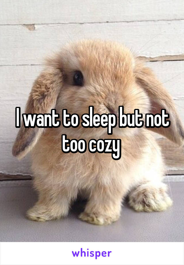 I want to sleep but not too cozy