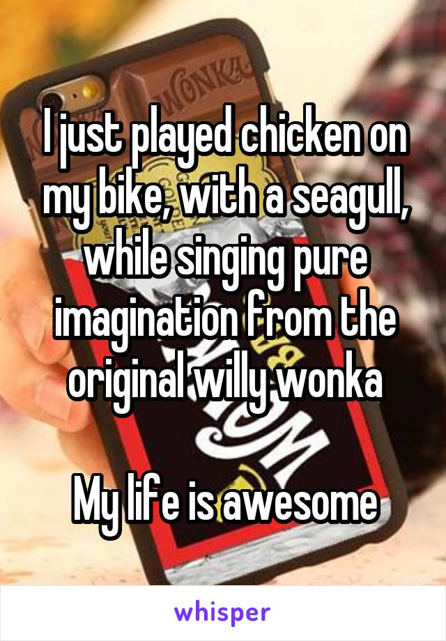 I just played chicken on my bike, with a seagull, while singing pure imagination from the original willy wonka  My life is awesome