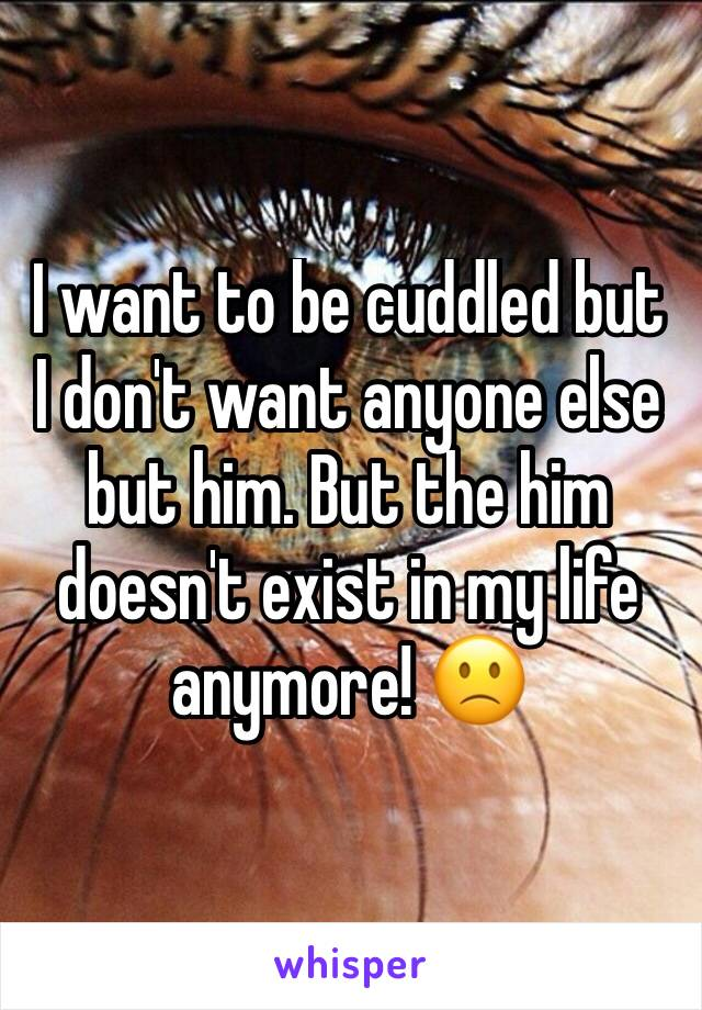 I want to be cuddled but I don't want anyone else but him. But the him doesn't exist in my life anymore! 🙁
