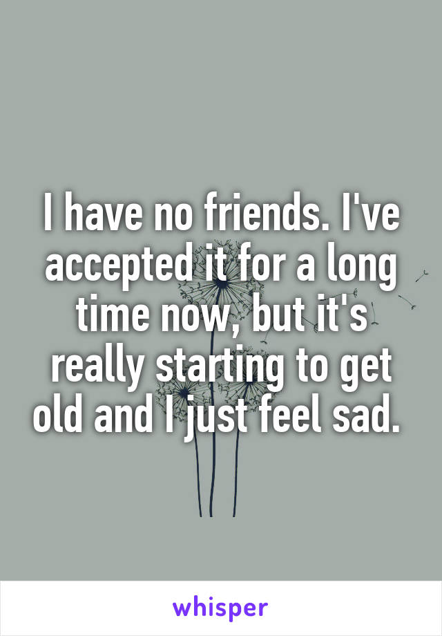 I have no friends. I've accepted it for a long time now, but it's really starting to get old and I just feel sad.