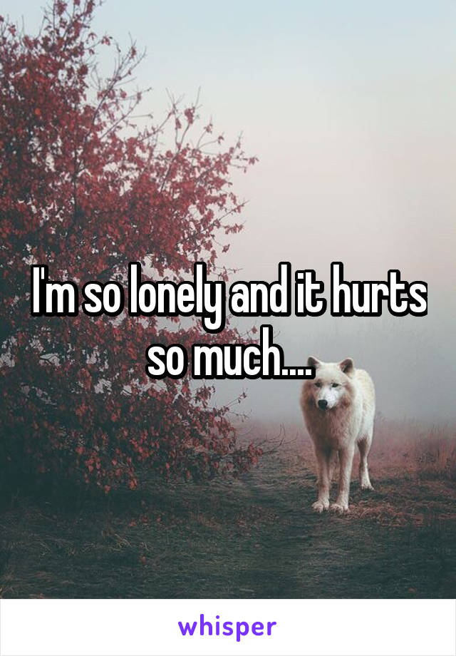 I'm so lonely and it hurts so much....