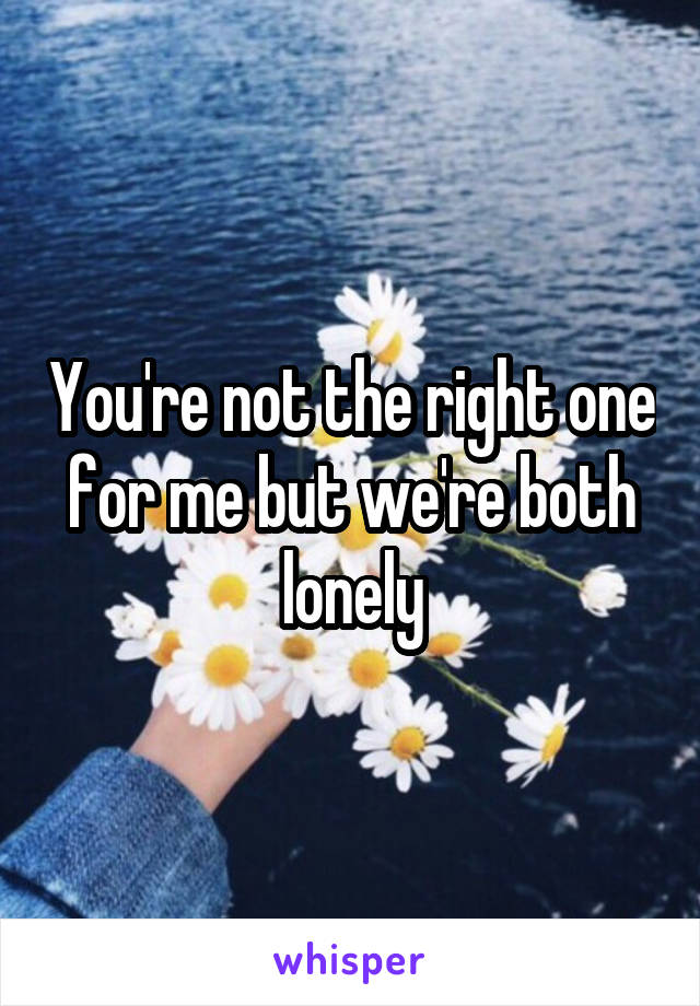 You're not the right one for me but we're both lonely