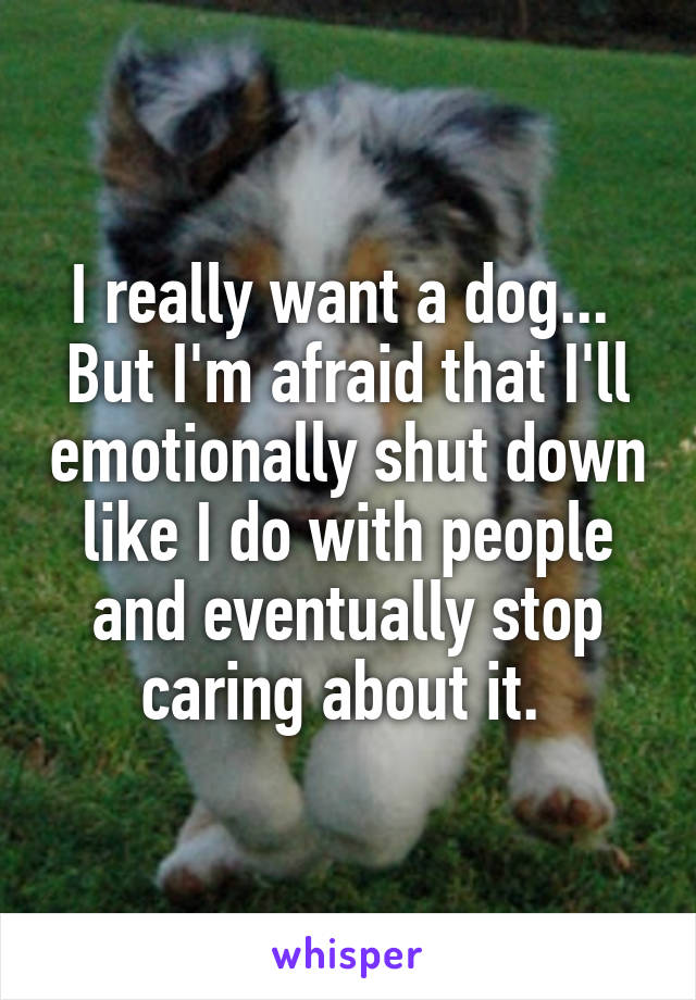I really want a dog...  But I'm afraid that I'll emotionally shut down like I do with people and eventually stop caring about it.