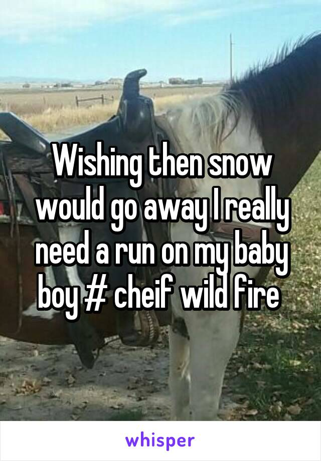 Wishing then snow would go away I really need a run on my baby boy # cheif wild fire