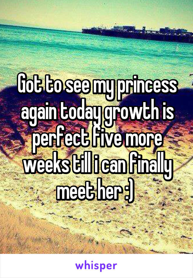 Got to see my princess again today growth is perfect five more weeks till i can finally meet her :)