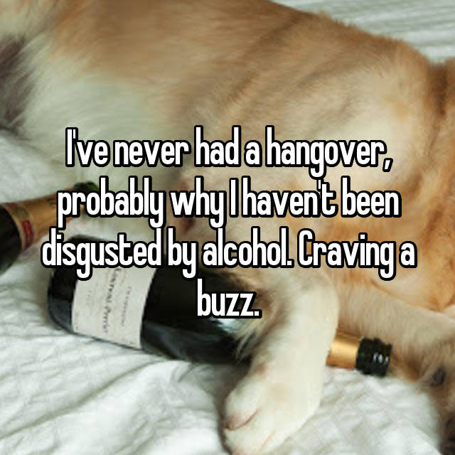 I've never had a hangover, probably why I haven't been disgusted by alcohol. Craving a buzz.