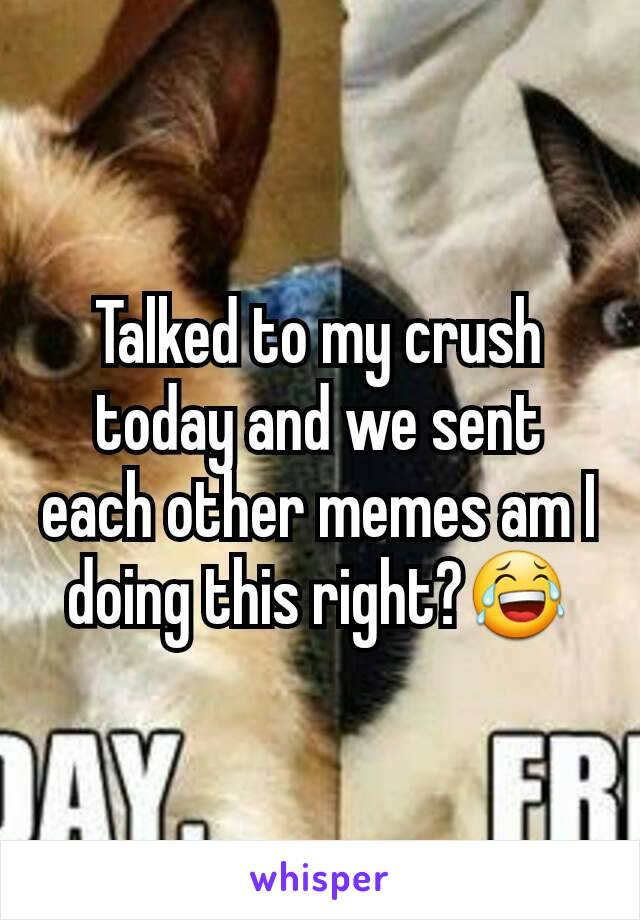 Talked to my crush today and we sent each other memes am I doing this right?😂