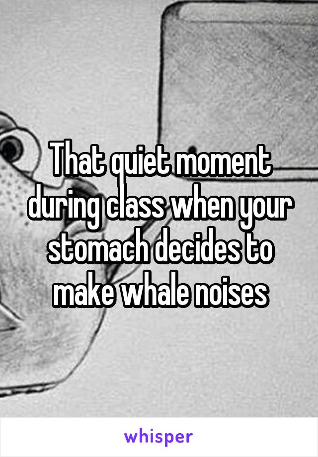 That quiet moment during class when your stomach decides to make whale noises