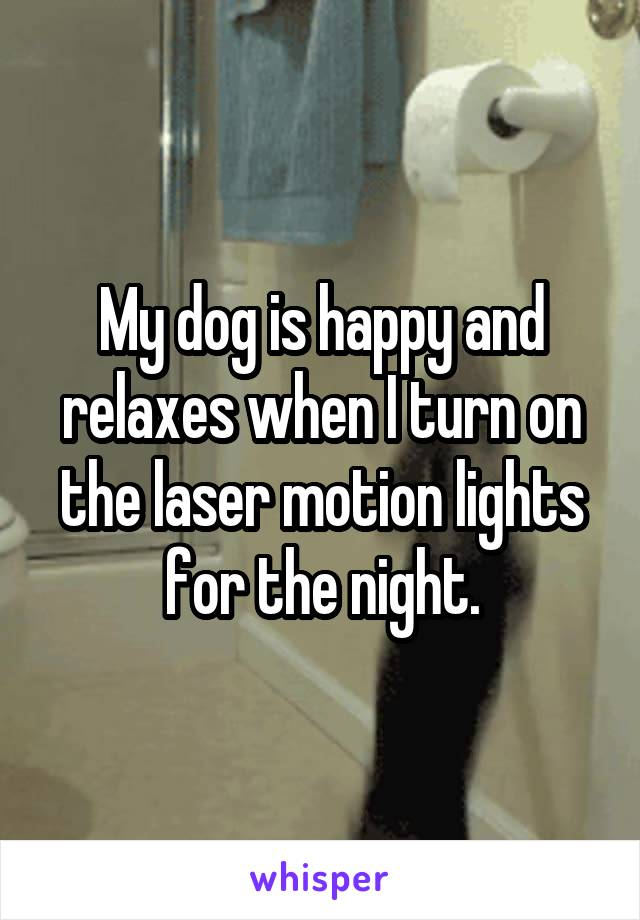 My dog is happy and relaxes when I turn on the laser motion lights for the night.