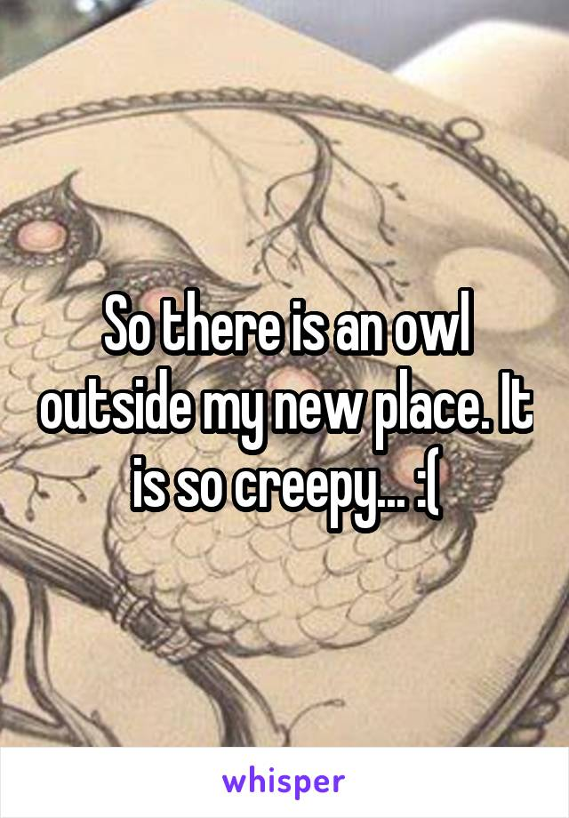 So there is an owl outside my new place. It is so creepy... :(