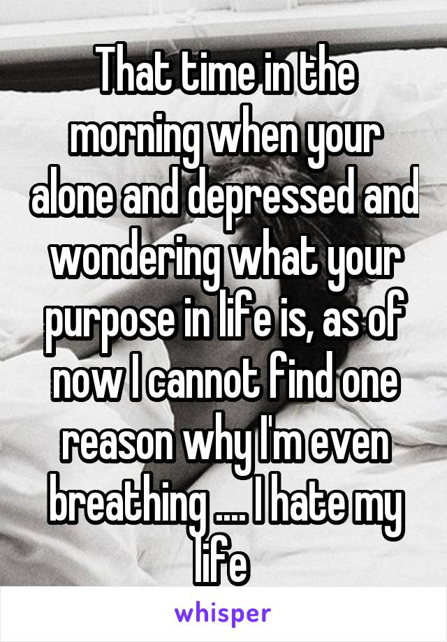 That time in the morning when your alone and depressed and wondering what your purpose in life is, as of now I cannot find one reason why I'm even breathing .... I hate my life
