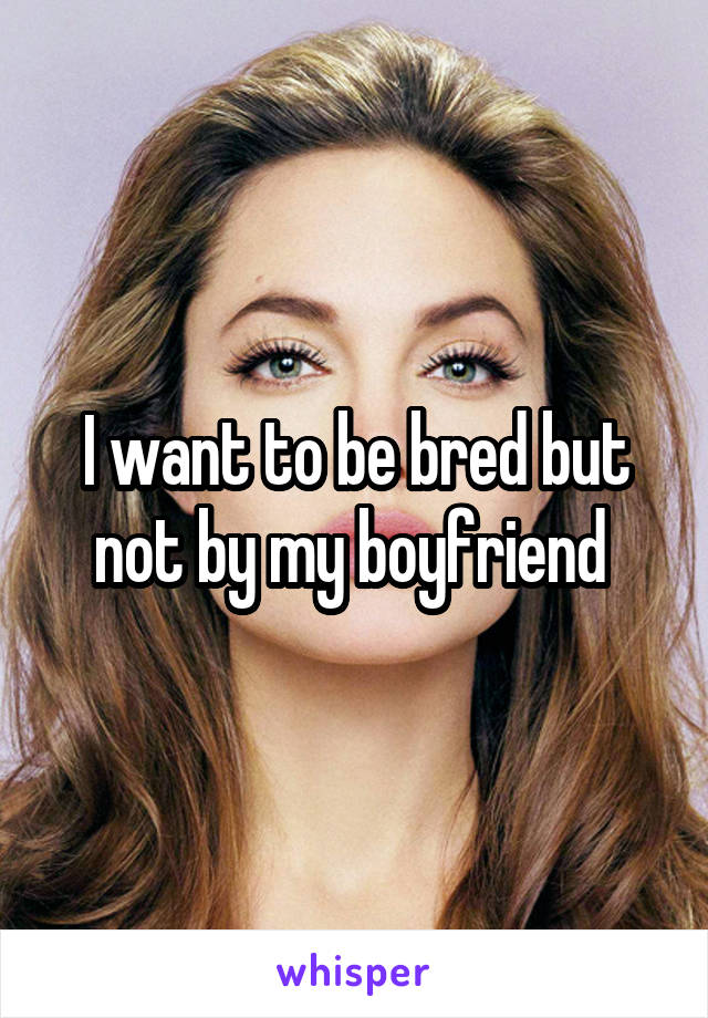I want to be bred but not by my boyfriend