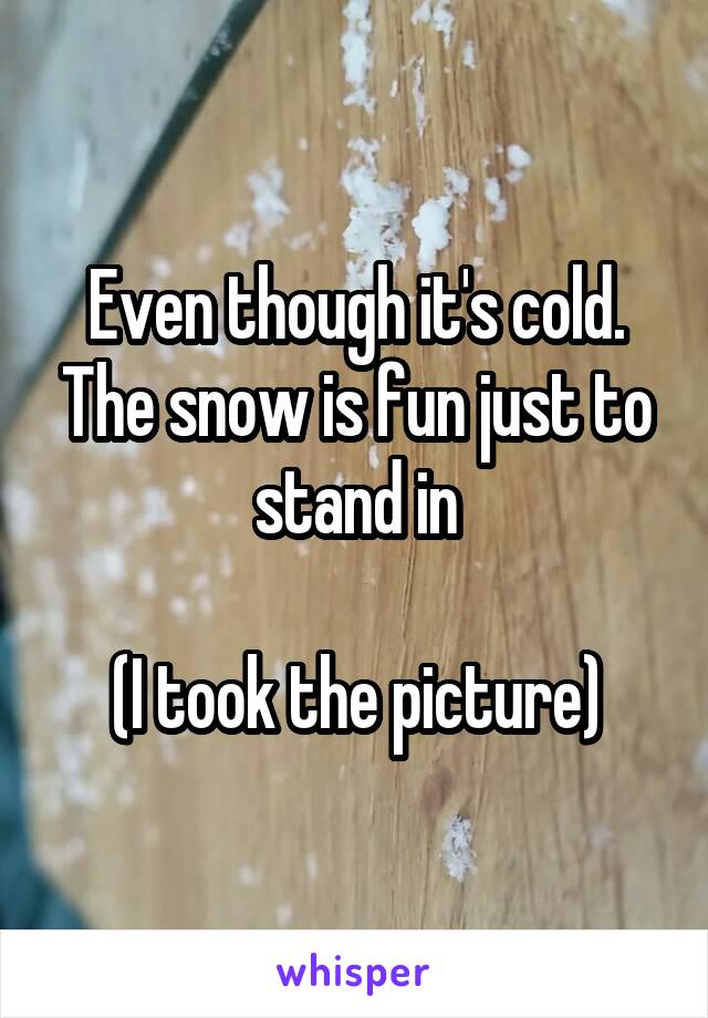 Even though it's cold. The snow is fun just to stand in  (I took the picture)
