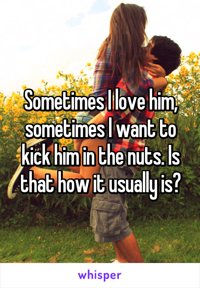Sometimes I love him, sometimes I want to kick him in the nuts. Is that how it usually is?