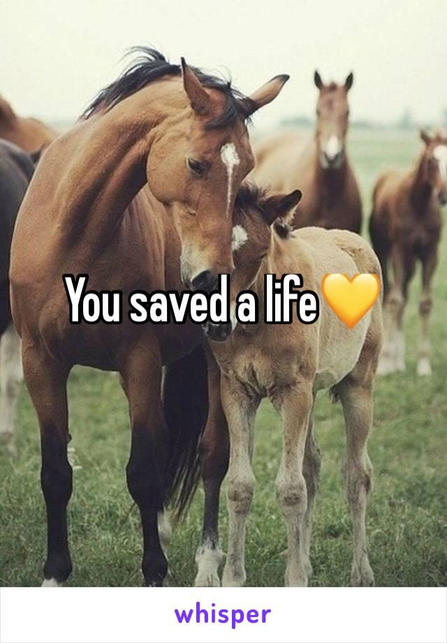 You saved a life💛