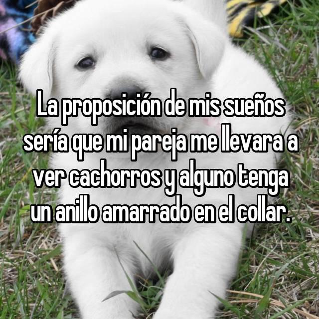 La proposición de mis sueños sería que mi pareja me llevara a ver cachorros y alguno tenga un anillo amarrado en el collar.