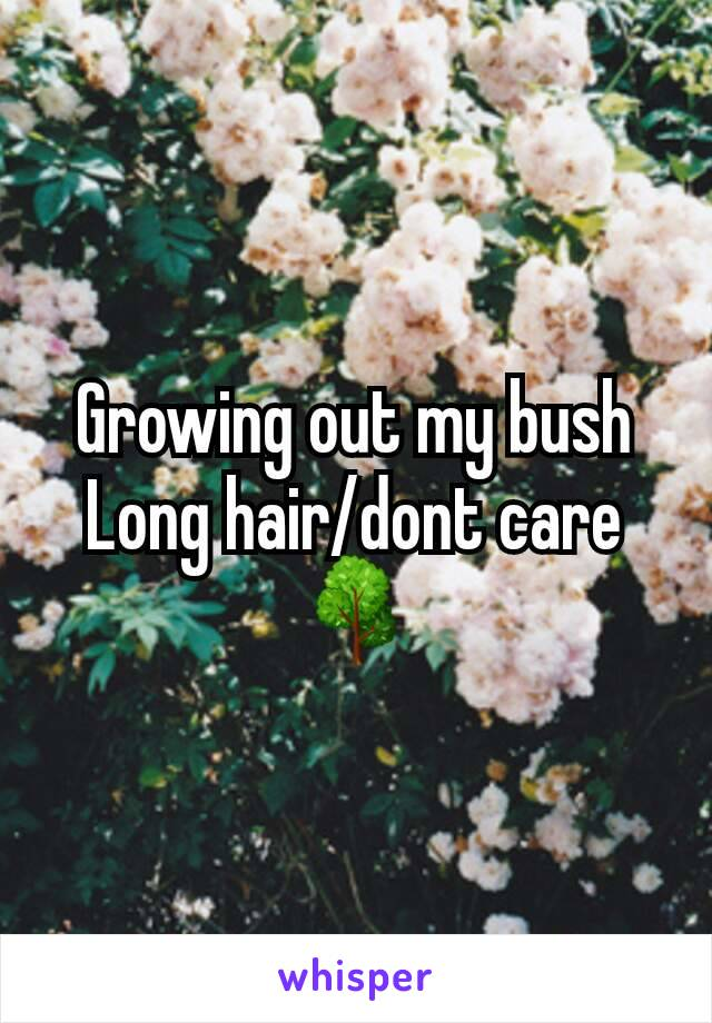 Growing out my bush Long hair/dont care 🌳