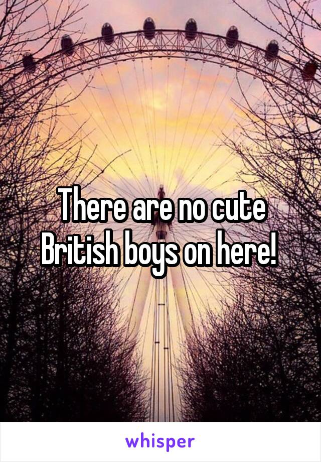 There are no cute British boys on here!