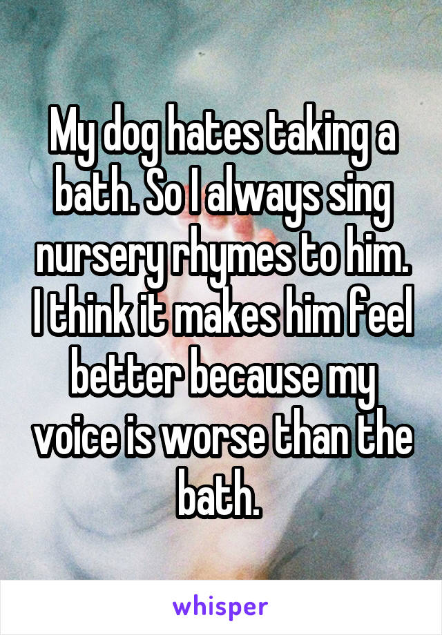 My dog hates taking a bath. So I always sing nursery rhymes to him. I think it makes him feel better because my voice is worse than the bath.