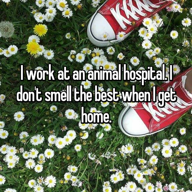 I work at an animal hospital. I don't smell the best when I get home.