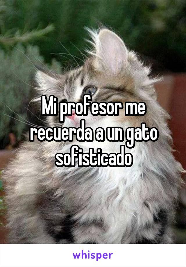 Mi profesor me recuerda a un gato sofisticado