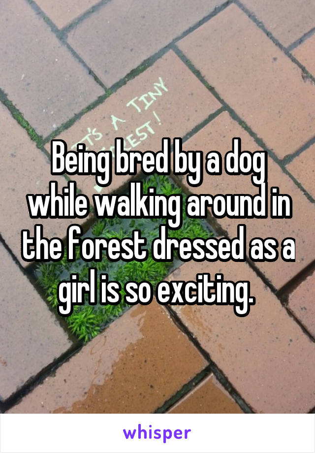 Being bred by a dog while walking around in the forest dressed as a girl is so exciting.