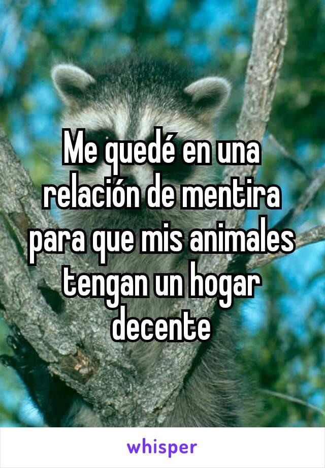 Me quedé en una relación de mentira para que mis animales tengan un hogar decente