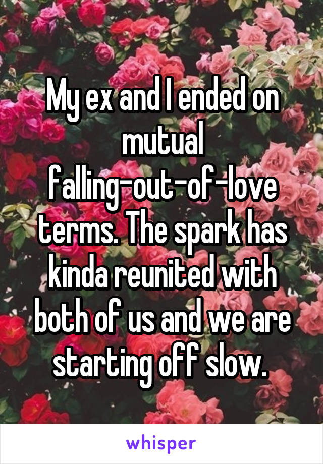 My ex and I ended on mutual falling-out-of-love terms. The spark has kinda reunited with both of us and we are starting off slow.