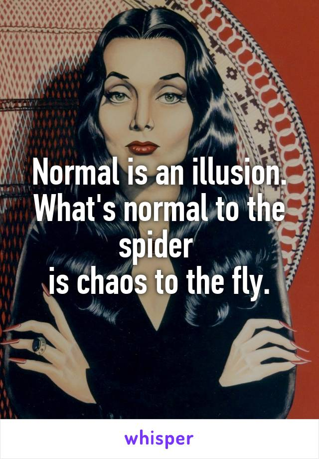 Is an illusion whats normal to the spider is chaos to the fly normal is an illusion whats normal to the spider is chaos to the fly altavistaventures Choice Image
