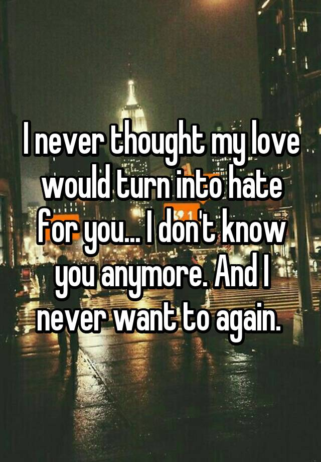 I never thought my love would turn into hate for you    I