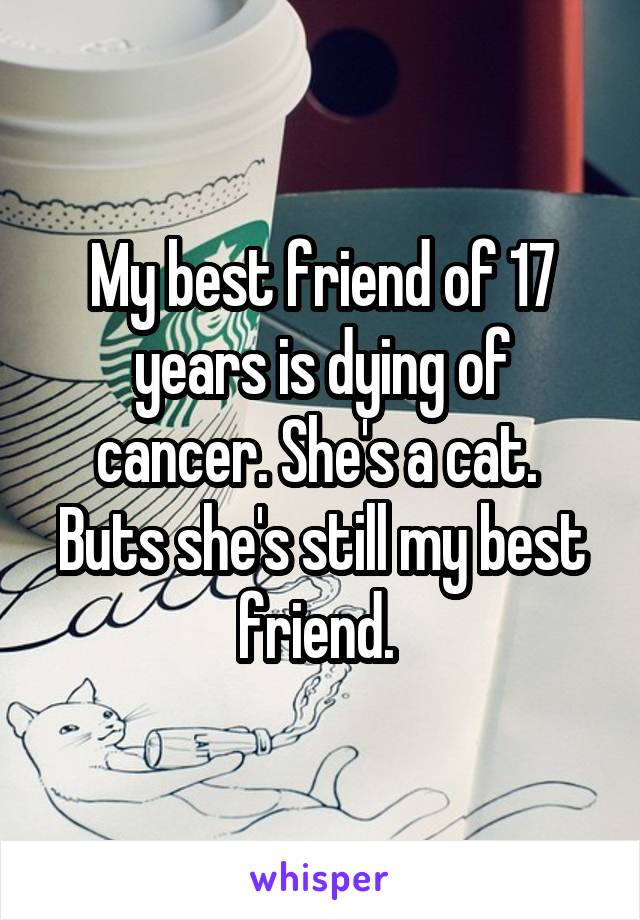 My best friend of 17 years is dying of cancer  She's a cat  Buts