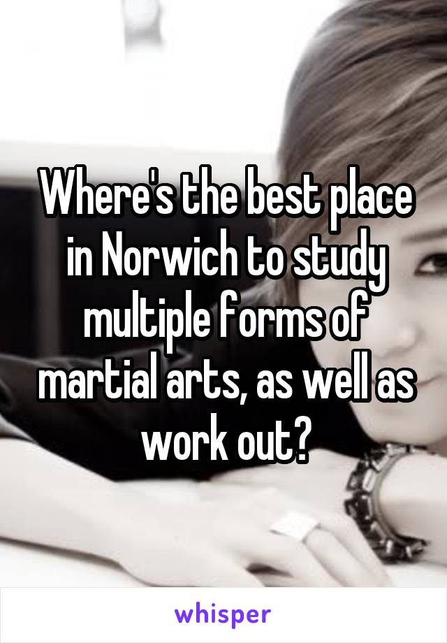 Where's the best place in Norwich to study multiple forms of martial arts, as well as work out?