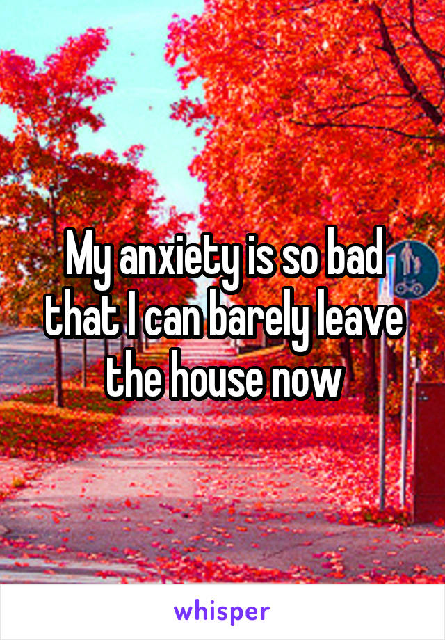My anxiety is so bad that I can barely leave the house now