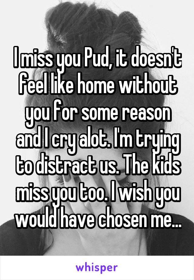 I miss you Pud, it doesn't feel like home without you for some reason and I cry alot. I'm trying to distract us. The kids miss you too. I wish you would have chosen me...