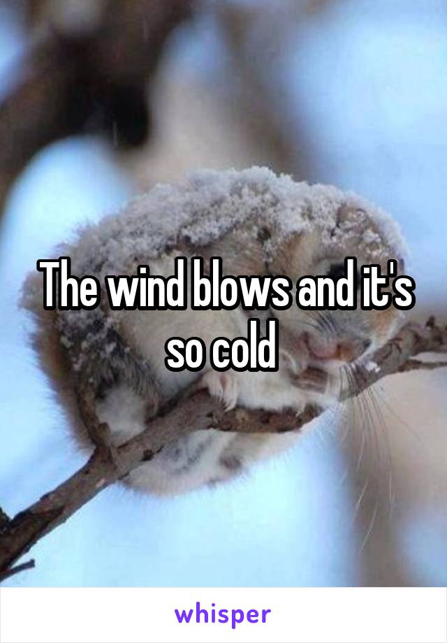 The wind blows and it's so cold