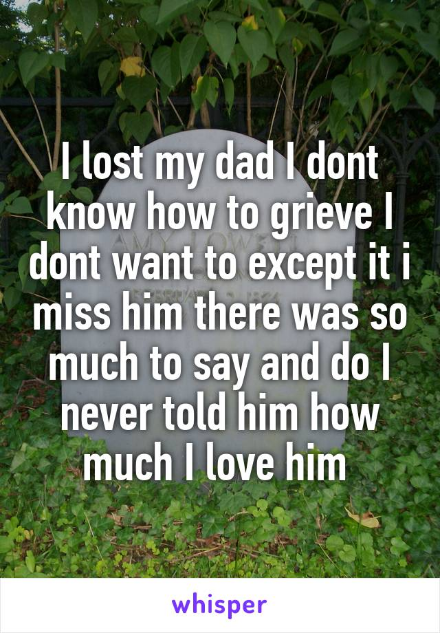 I lost my dad I dont know how to grieve I dont want to except it i miss him there was so much to say and do I never told him how much I love him
