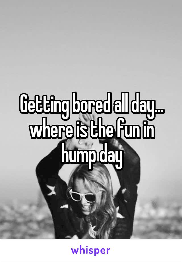 Getting bored all day... where is the fun in hump day