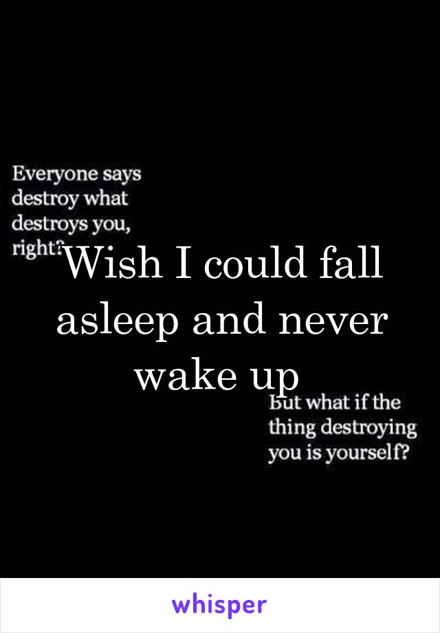 Wish I could fall asleep and never wake up