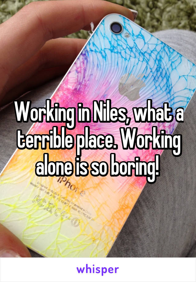 Working in Niles, what a terrible place. Working alone is so boring!