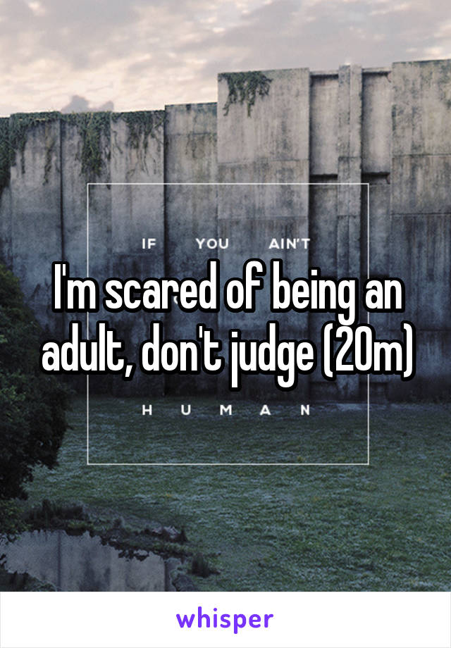 I'm scared of being an adult, don't judge (20m)